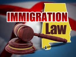 Migration Lawyer