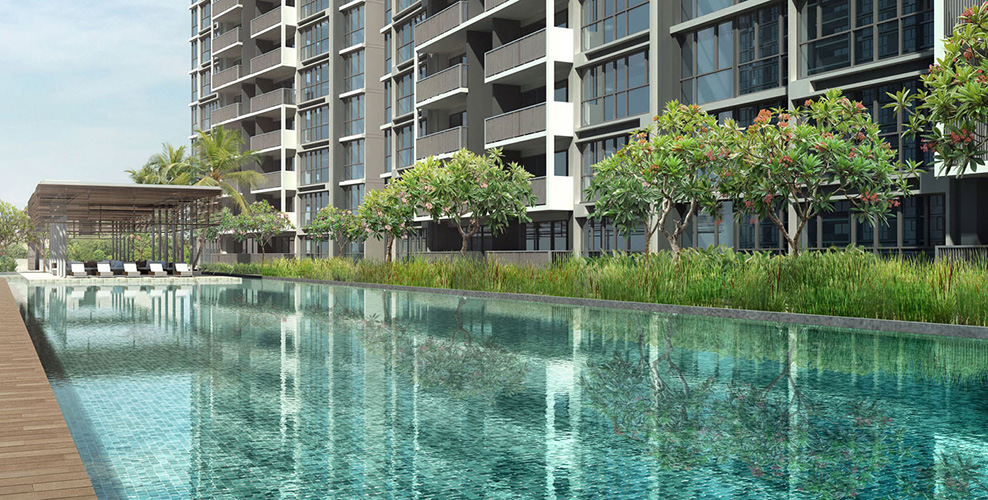 High Park Apartment